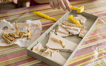 Educational game to find fossils for a small archaeologist, with children's hands digging